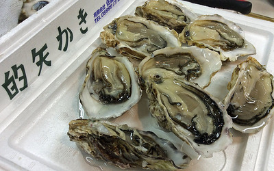 160313oysters.jpg